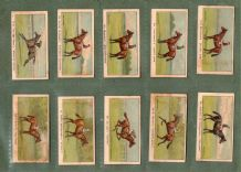 Tobacco Cigarette cards set Winners of the Turf  Horse Racing set